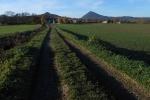 2015-11-18_Kolmo-na-Holy-vrch